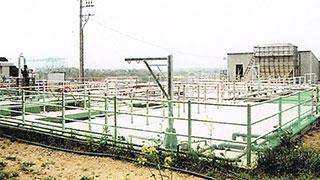 愛知県H農場(350頭)